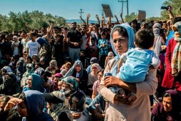 """KRIZA/ Frika gjermane nga fluksi i emigrantëve, """"kuotat"""" ngrenë alarm më shumë se jeta njerëzore"""