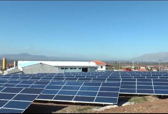 Energji nga Myzeqeja, prezantohet parku i parë fotovoltaik