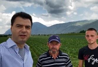 Basha, denoncime e premtime nga fronti i bujqësisë: mrekullira jo, subvecione po!